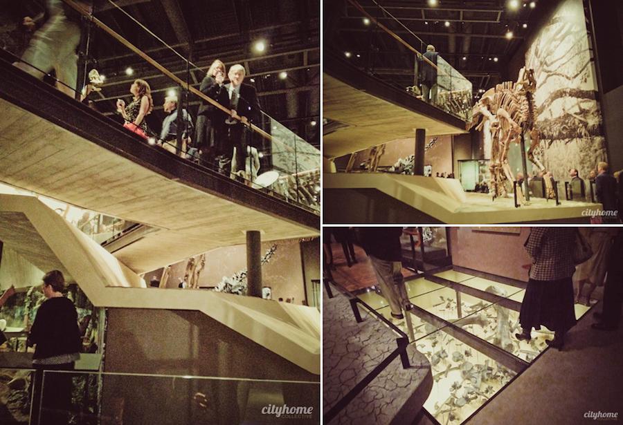 Utah Museum Of Natural History Salt Lake City Cityhome
