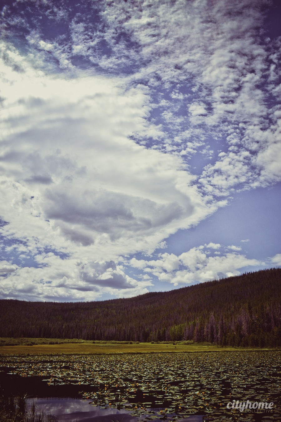Salt-Lake-Area-Uintas-Wilderness-Camping-10