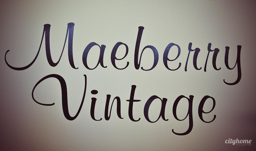Maeberry-Vintage-Salt-Lake-Local-Boutique-Business-1