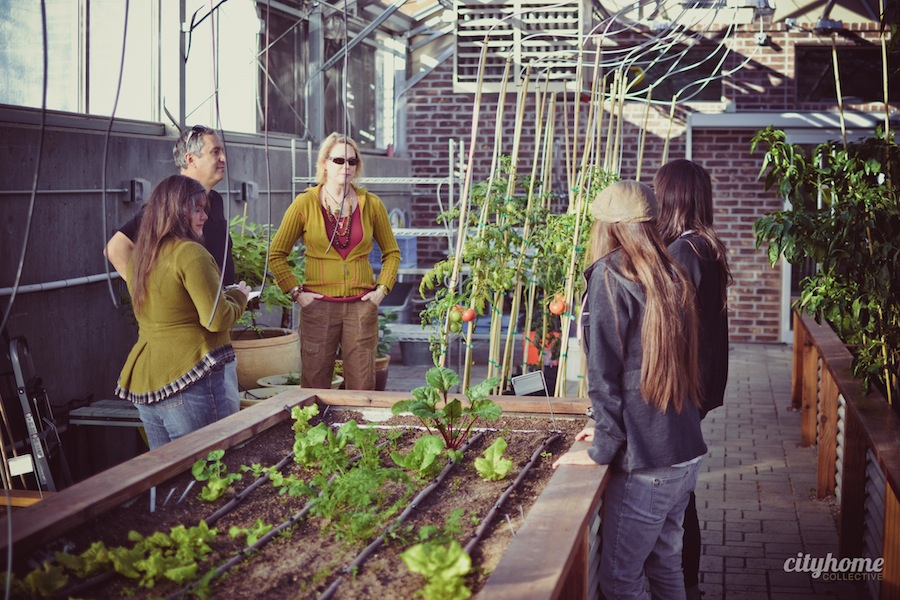 Frog-Bench-Farms-Salt-Lake-Local-Sustainable-Produce-Business-11