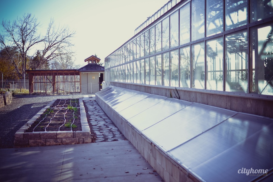 Frog-Bench-Farms-Salt-Lake-Local-Sustainable-Produce-Business-2