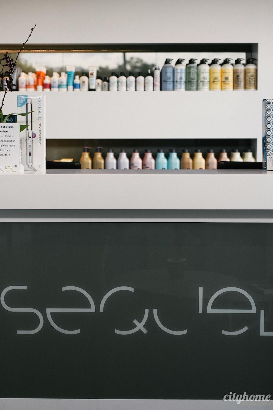 sequel-salon-16