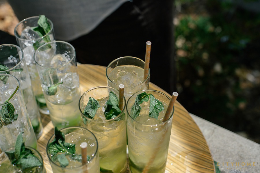 cocktails-101-moscow-mule-14